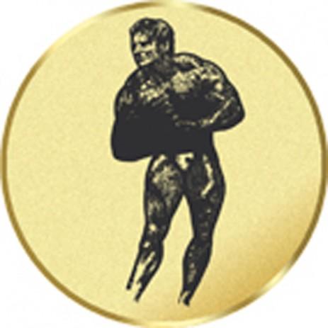 Bodybuilder - Male Insert