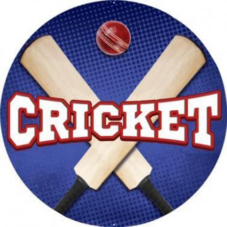 Cricket Insert