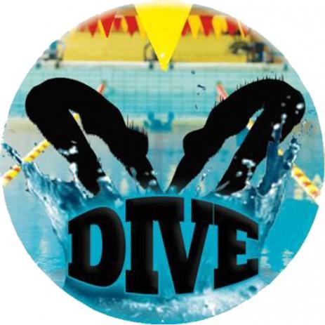 Diving Insert