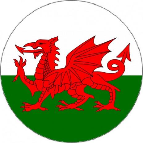 Flag - Wales Insert