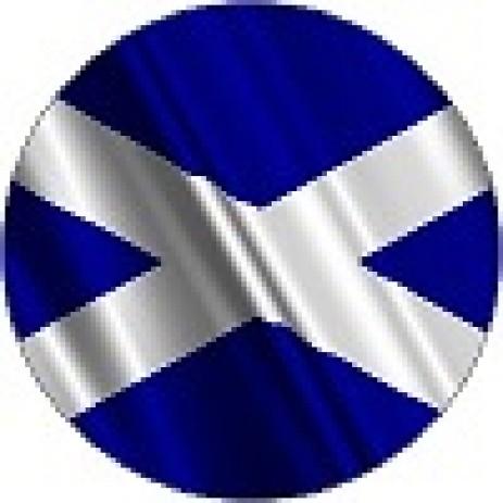 Flags - Scotland Insert