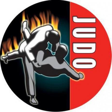 Judo Insert