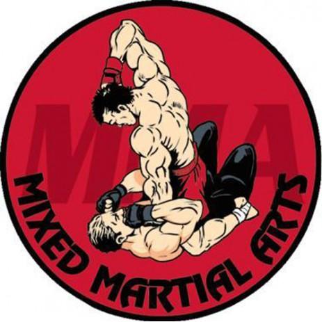 Mixed Martial Arts Insert