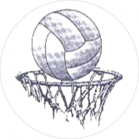 Netball Insert