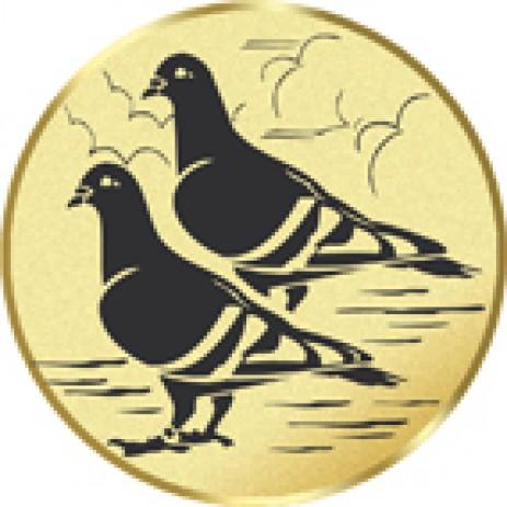 Pigeon Racing Insert