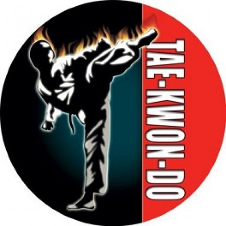 Taekwondo Insert