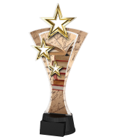Triple Star Reading and Literature Trophy