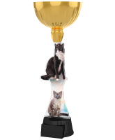 Vancouver Cat Show Gold Cup Trophy
