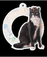 Rio Cat Show Medal