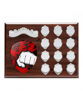 Wessex Martial Arts Wooden 12 Year Annual Shield