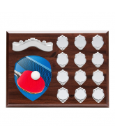 Wessex Table Tennis Wooden 12 Year Annual Shield