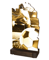 Shard Classic Football Eco Friendly Wooden Trophy