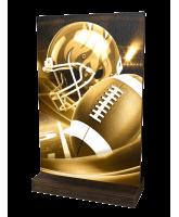 Sherwood Classic American Football Eco Friendly Wooden Trophy