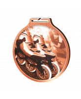 Habitat Classic Inline Skating Bronze Eco Friendly Wooden Medal