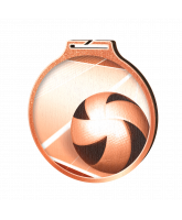 Habitat Classic Volleyball Bronze Eco Friendly Wooden Medal