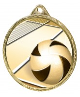 Volleyball Classic Texture 3D Print Gold Medal