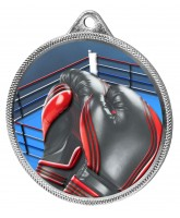 Boxing Colour Texture 3D Print Silver Medal