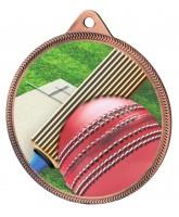 Cricket Colour Texture 3D Print Bronze Medal
