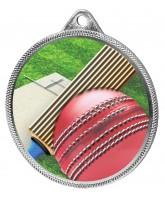 Cricket Colour Texture 3D Print Silver Medal
