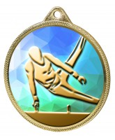 Gymnast Boys Silhouette Colour Texture 3D Print Gold Medal