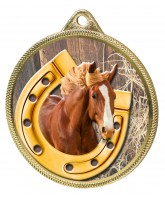 Horseshoe Equestrian Colour Texture 3D Print Gold Medal
