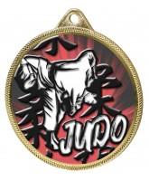 Judo Colour Texture 3D Print Gold Medal