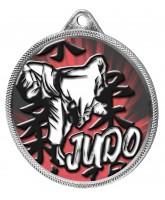 Judo Colour Texture 3D Print Silver Medal