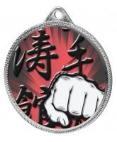 Martial Arts Fist Colour Texture 3D Print Silver Medal
