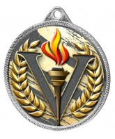 Victory Colour Texture 3D Print Silver Medal