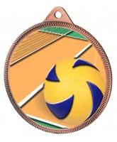 Volleyball Colour Texture 3D Print Bronze Medal