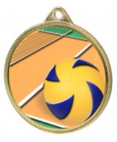 Volleyball Colour Texture 3D Print Gold Medal