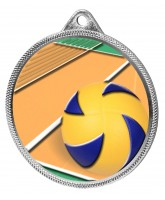 Volleyball Colour Texture 3D Print Silver Medal