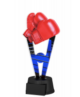 Oxford Boxing Trophy