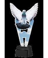 Oxford Pigeon Trophy