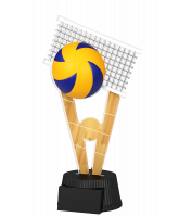 Oxford Volleyball Trophy