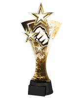 Classic Triple Star Martial Arts Fist Trophy