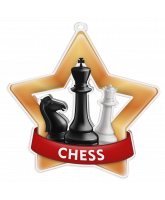 Chess Mini Star Bronze Medal