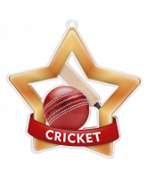Cricket Mini Star Bronze Medal