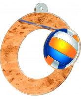 Rio Beach Volleyball Medal