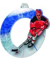 Rio Ice Hockey Player Medal