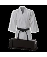 Turin Martial Arts Trophy