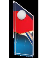 Everest Table Tennis Trophy