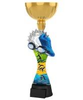 Vancouver Triathlon Gold Cup Trophy