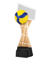 Toronto Volleyball Trophy