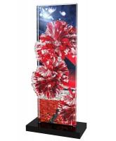 Apla Cheerleader Trophy