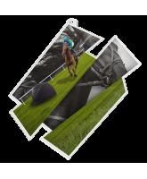 Horse Riding Supersize Artistic Medal