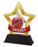 Mini Star Cricket Trophy