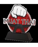 Ostrava Kickboxing Muay Thai Trophy