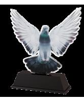 Ostrava Pigeon Racing Trophy