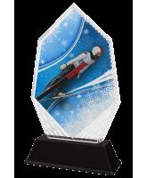 Whistler Ski Jump Trophy